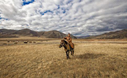 paarden trekking kirgizie